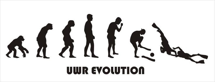 rugby evolution We explore the haka's evolution within new zealand rugby.