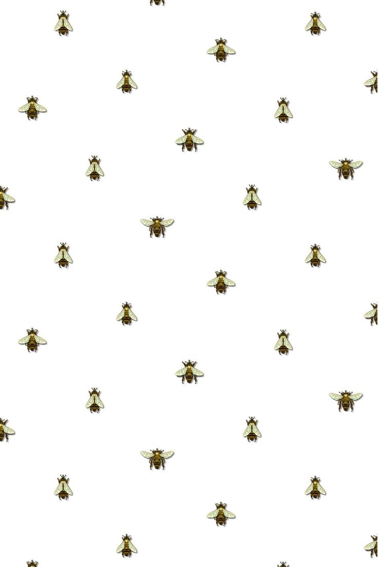 Timorous Beasties Wallcoverings - Wild Honey Bee Spot - may be perfect fit for powder room.