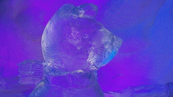 Flip bezoekt een ijspaleis. Samen met twee kinderen wandelt Flip door de grote hal vol met beelden van ijs. Ze zien indianen, een echte ijsbeer, een reus en nog veel meer. Allemaal gemaakt van ijsblokken. Dan komen ze bij een blok ijs speciaal voor Flip de beer. Ze helpen allemaal een handje mee.
