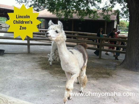 Best Family Friendly Images On Pinterest Nebraska Park In - Lincoln children's zoo birthday party