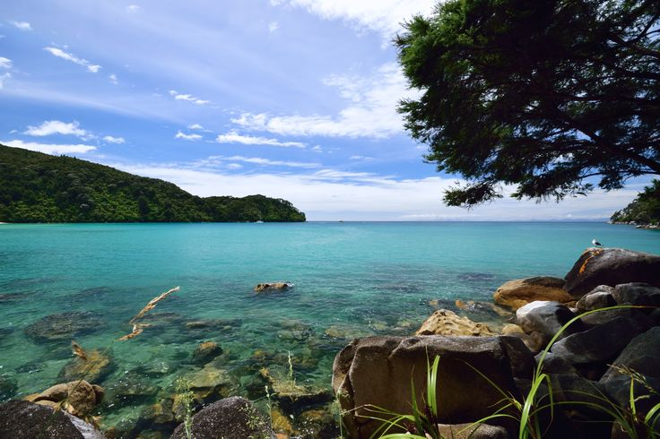 #Abel #Tasman #National Park #NZ