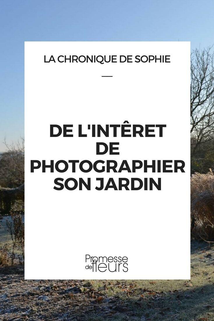 De L Interet De Photographier Son Jardin Jardins Jardin