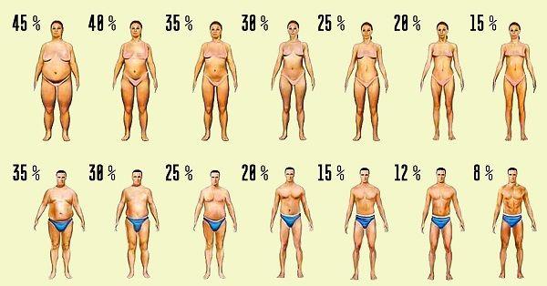 ожирение у женщин и мужчин