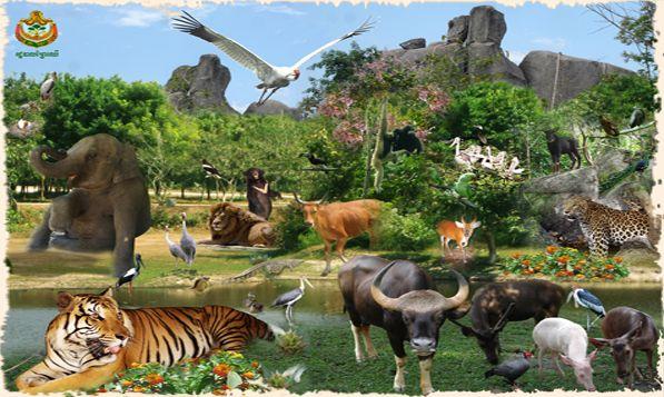 Phnom tamao zoo