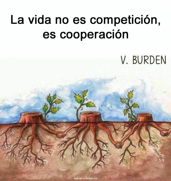 La Vida No Es Competición Es Cooperación Frases