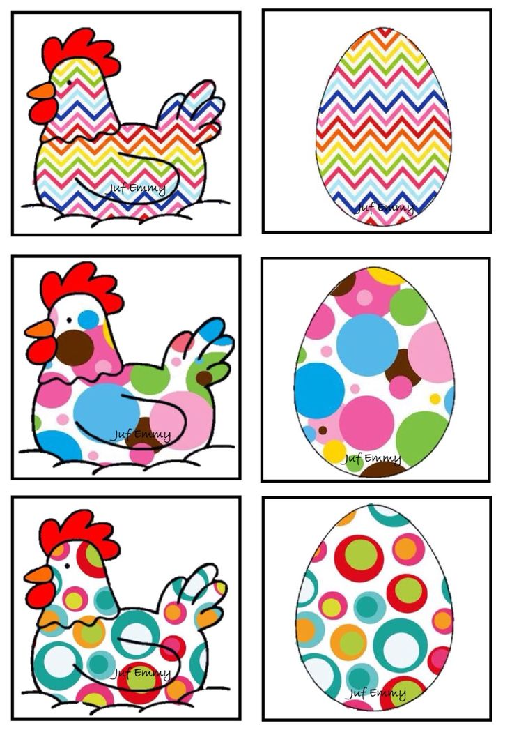 Couleurs association poules-oeufs 3