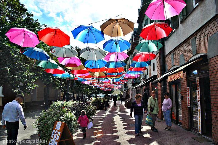 Kiskunhalas, city, street, umbrella, color, Hungary,
