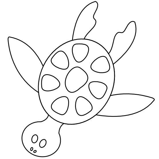 Line Art Adobe Illustrator : Colorful animal sea turtle black white line art scalable