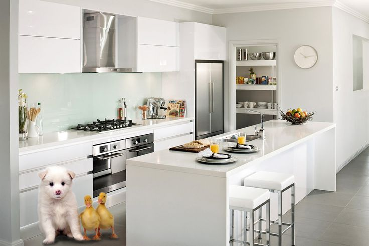 Our Symphony kitchen is a perfect place for the family to hang out, eat, talk and relax. Even for our little friends.