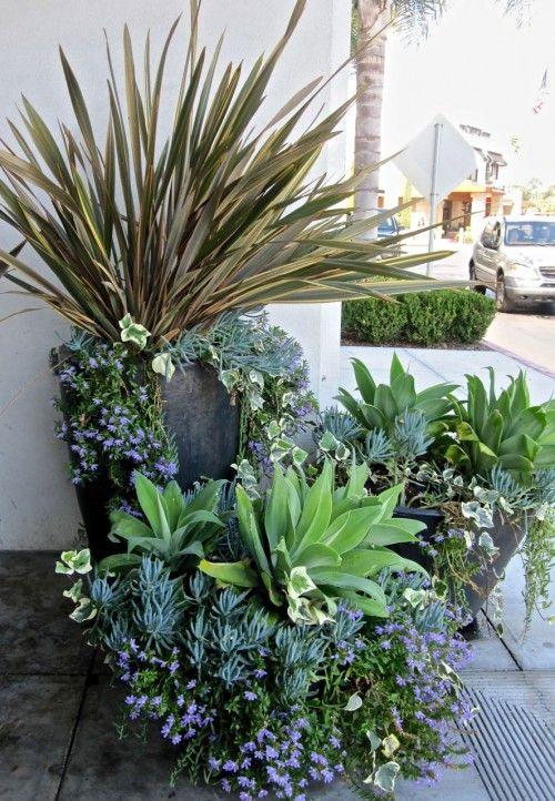 Flower Garden Ideas In Michigan 605 best container gardening images on pinterest | flowers, plants