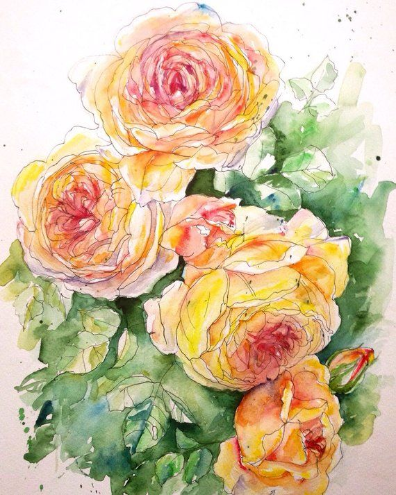 English Roses 3 Original Watercolor Ink Painting Garden Flowers