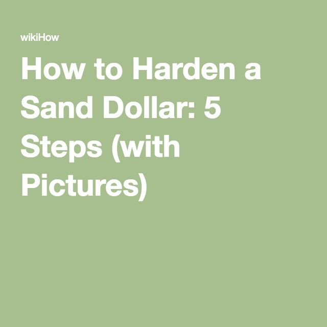 How to Harden a Sand Dollar: 5 Steps (with Pictures)