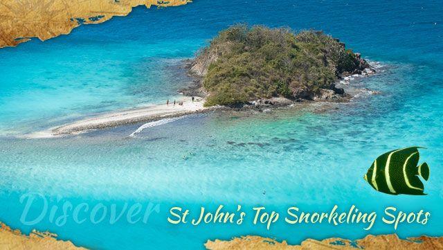 Best snorkeling spots on St John Virgin Islands