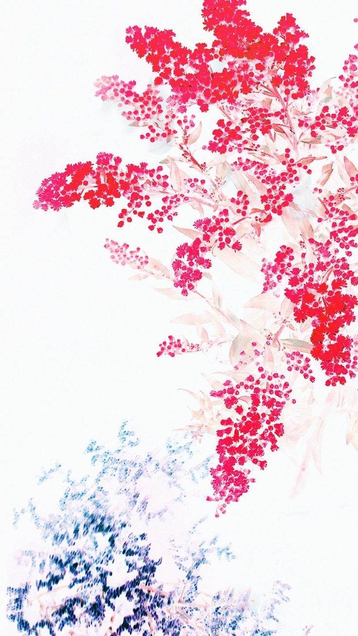 Apple Red White Flower Ios9 #iPhone #6 #wallpaper