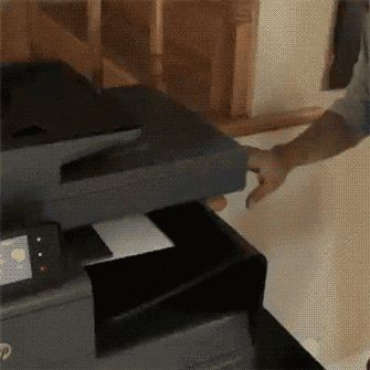 How to print a kitten !!