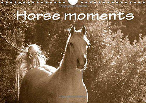 Horse moments (Wall Calendar 2016 DIN A4 Landscape): Sepia photographs of different horses in South Africa, captured by photographer Anke van Wyk ... calendar, 14 pages) (Calvendo Animals) von Anke van Wyk http://www.amazon.de/dp/1325054046/ref=cm_sw_r_pi_dp_OtU9ub0HKJM88