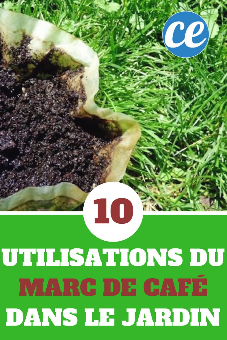 Ne Jetez Plus le Marc de Café ! 10 Façons Étonnantes de l'Utiliser Dans Votre Jardin.   Jardins ...