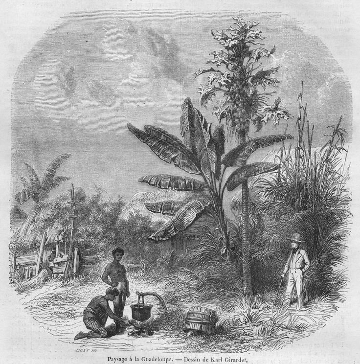 Slave House and Cooking, Guadeloupe, French West Indies, late 1840s