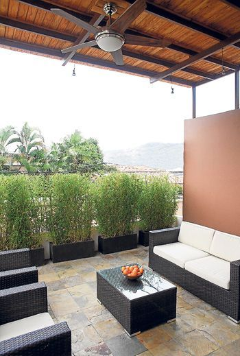 Diseño de María Fernanda de Stagg, en Guayaquil. Ambiente con macetas y bambú.