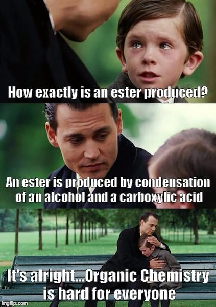 27290a59d71944ab95189350fbddafc9 diabetes memes finding neverland best 25 organic chemistry humor ideas on pinterest chemistry,Funny Organic Chemistry Memes