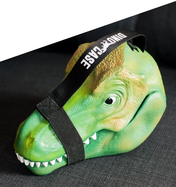 Dinosaur Lunch Box : Round up all your ROAR-some stuff!
