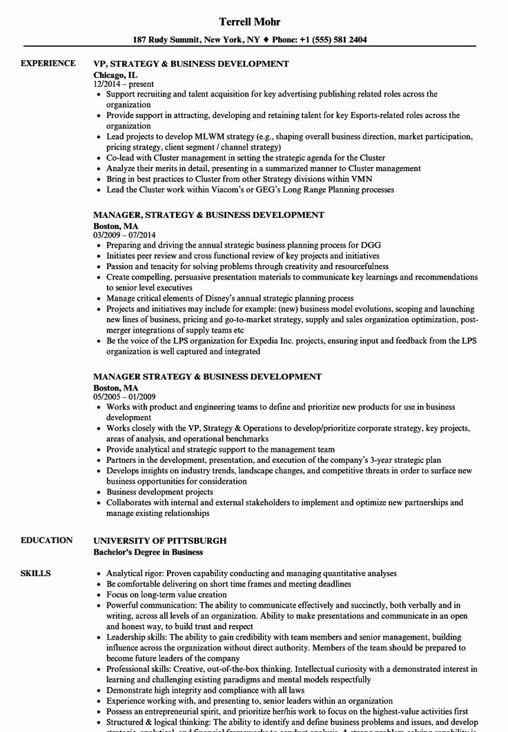 Business Development Manager Resume Beautiful Strategy