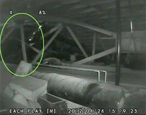 26 Spooky Ghost Videos That You Have to See: Attic Appartion