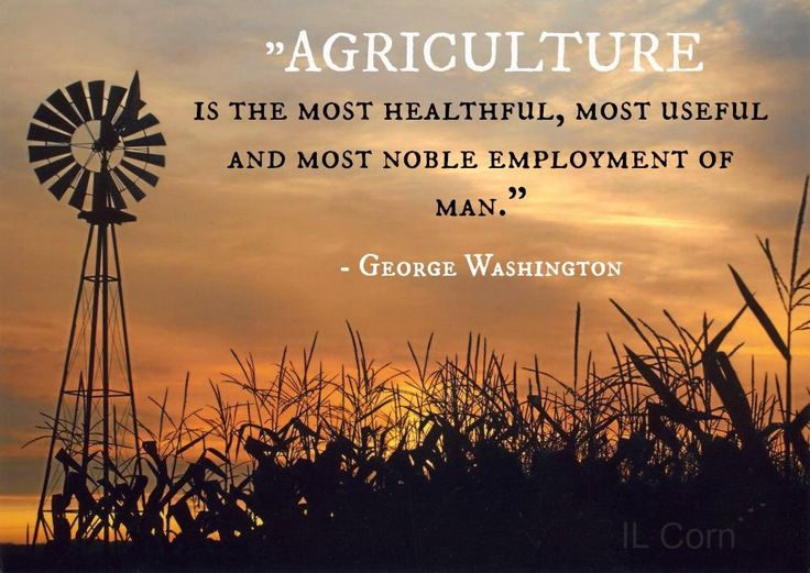 """""""Agriculture is the most healthful, most useful and most noble employment of man."""" - George Washington"""