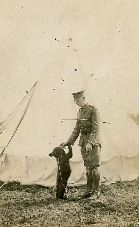 """Winnipeg the Bear, the inspiration for """"Winnie the Pooh,"""" is seen here with Lt. Harry Colebourn, when she was the unofficial mascot of a Canadian cavalry regiment in 1914."""