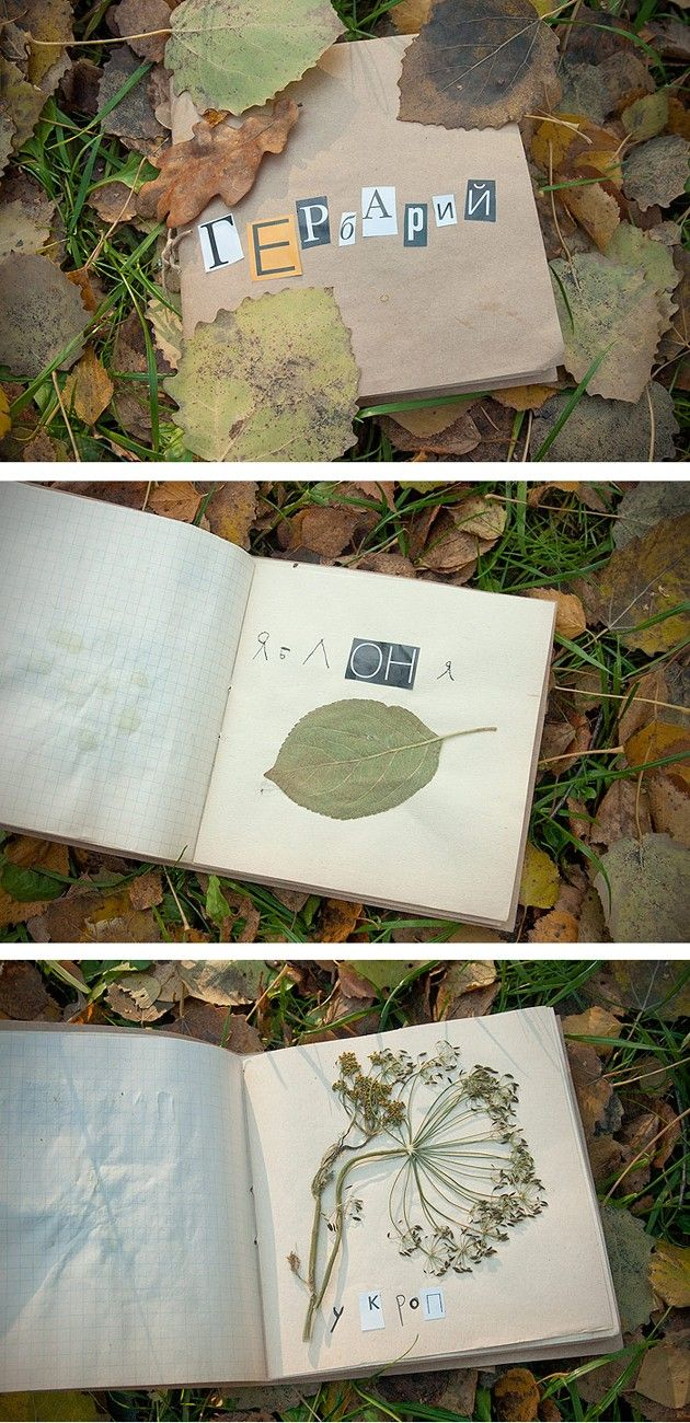 Plant/Flower/Leaf Journal