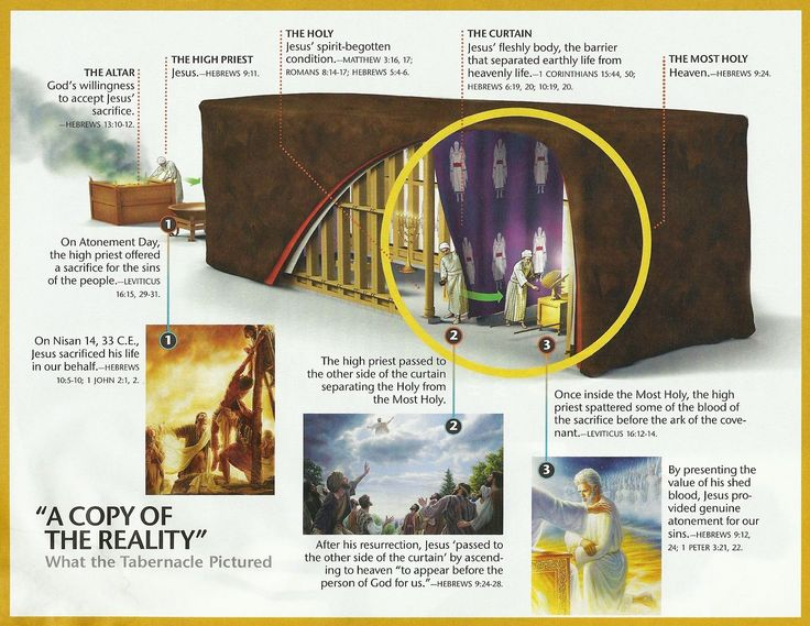 The tabernacle and its meaning for Christians. | Bible ...