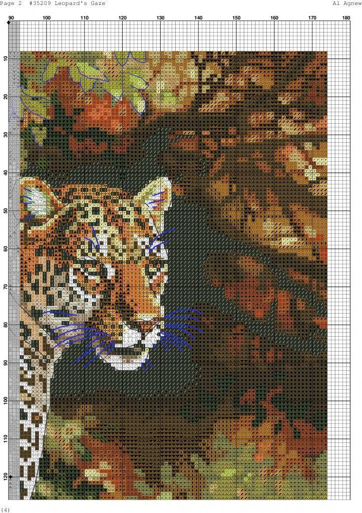 Leopard's Gaze-002