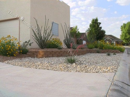 Landscaping ideas for front yard in arizona more for Desert landscaping ideas