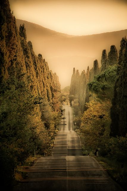 Bolgheri, Tuscany by massimodaddi, via Flickr