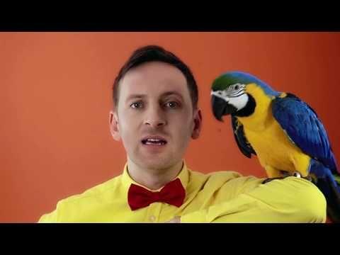 Miro Jaroš - ČAROVNÉ SLOVÍČKA (Videoklip z DVD) - YouTube