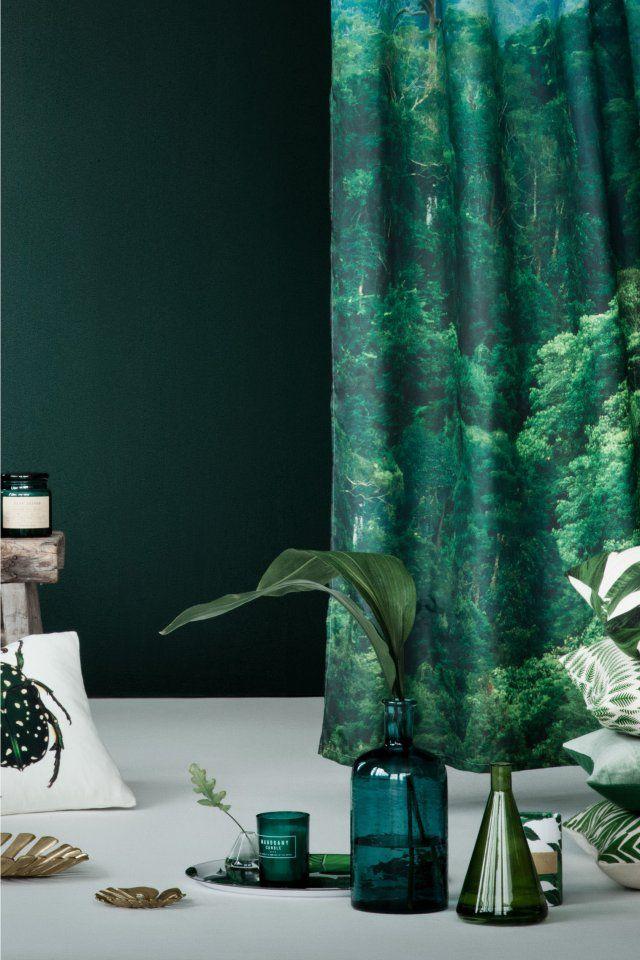 Décoration intérieure / Couleur coloré / Vert green feuillage tropical végétal bouteille foncé / idée inspiration