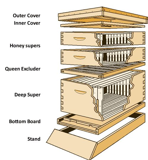 This is a diagram of a Langstroth Hive. It looks a lot more complicated than it really is.