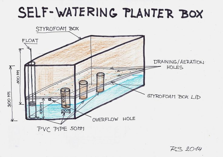 SpurTopia - Our Sustainable Living Story: SpurTopia's Invention: Self-watering planter box