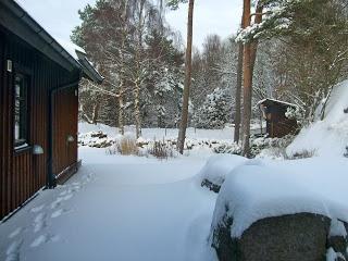 Swedish Snow