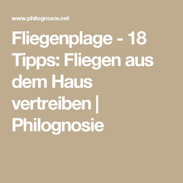 Fliegenplage - 18 Tipps: Fliegen aus dem Haus vertreiben | Philognosie