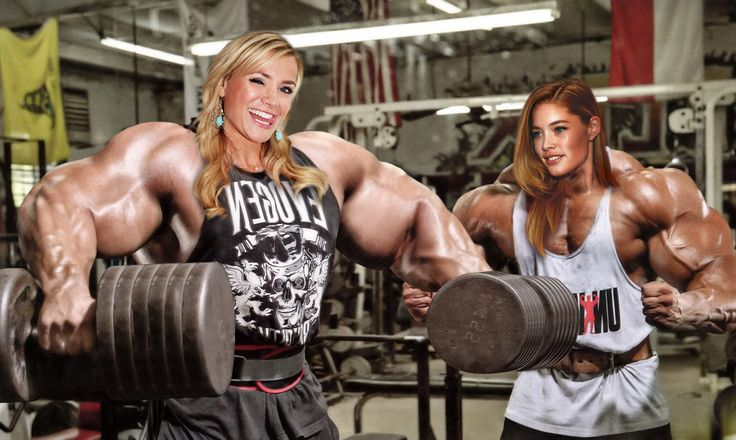 Area Orion: Celebrity Muscle Morphs