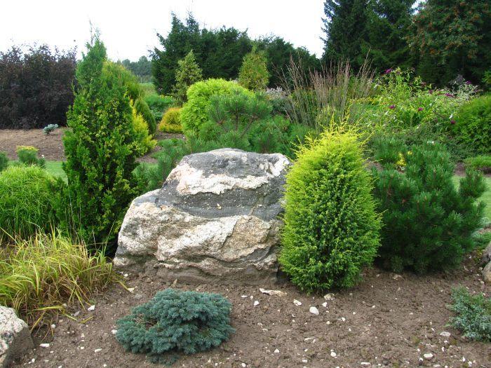 Сад на пологом склоне | Сады Северо-Запада