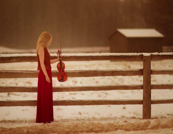 Violon, by Patty Maher.