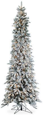 Sterling 9' Narrow Flocked Pencil Pine Christmas Tree, Add some lights and green to your holiday decor this year with this Kurt Adler 7 Foot Pre-Lit Point Pine Tree. With 350 pre-lit multi-colored lights, half your tree decorating is already done for you!