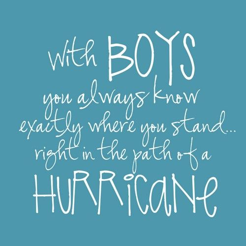 Quote from Erma Bombeck http://notjustcute.com/wp-content/uploads/2012/07/boys-print.jpg