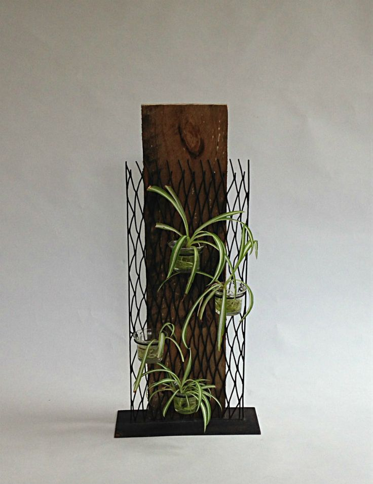 Beautiful Water Plant Holder