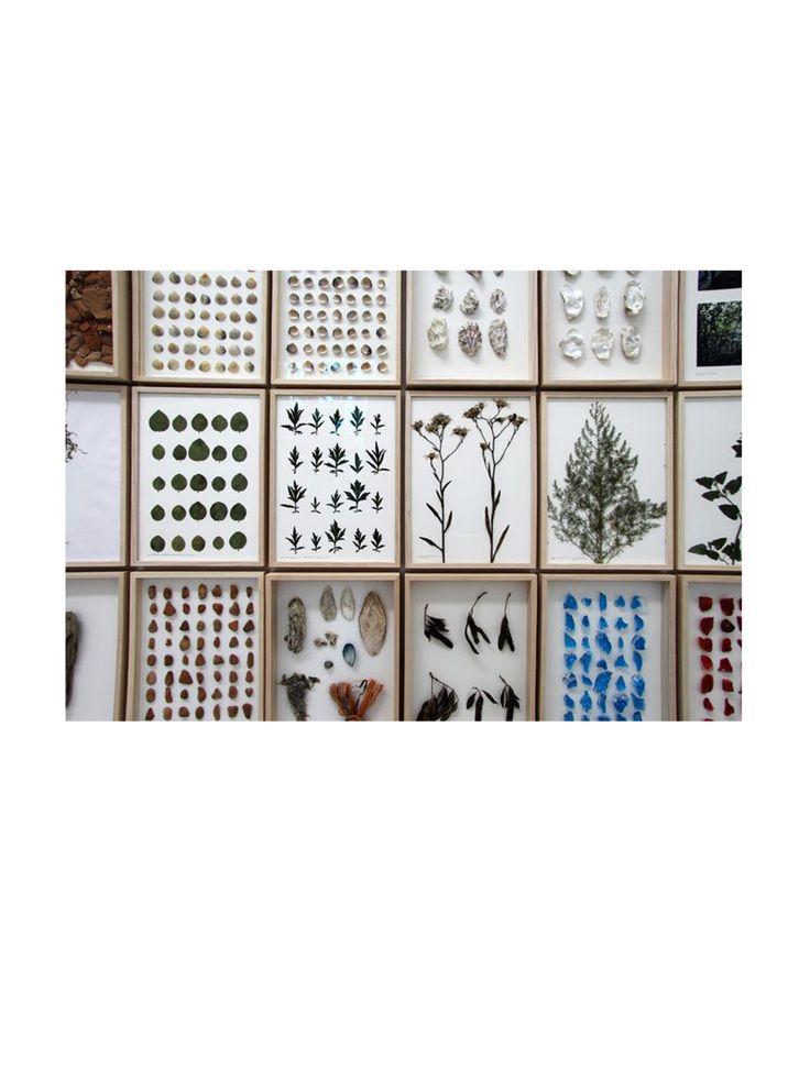 camillafrancesprintsposts: Herman De Vries, Netherlands Pavilion, Venice Biennale 2015