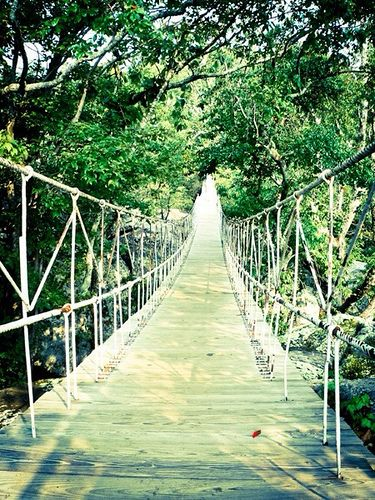 { The Smokey Mountains } Tennessee Experience the longest swinging bridge in the United States and hike along Prosperity Mountain to beautiful Lost Mine Falls.