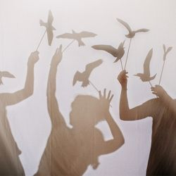 How to create your own bird shaped shadow puppets using our downloadable template.