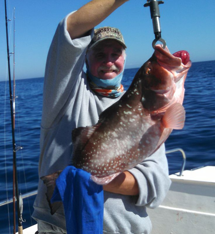23 best fishing anna maria island florida images on for Fishing anna maria island